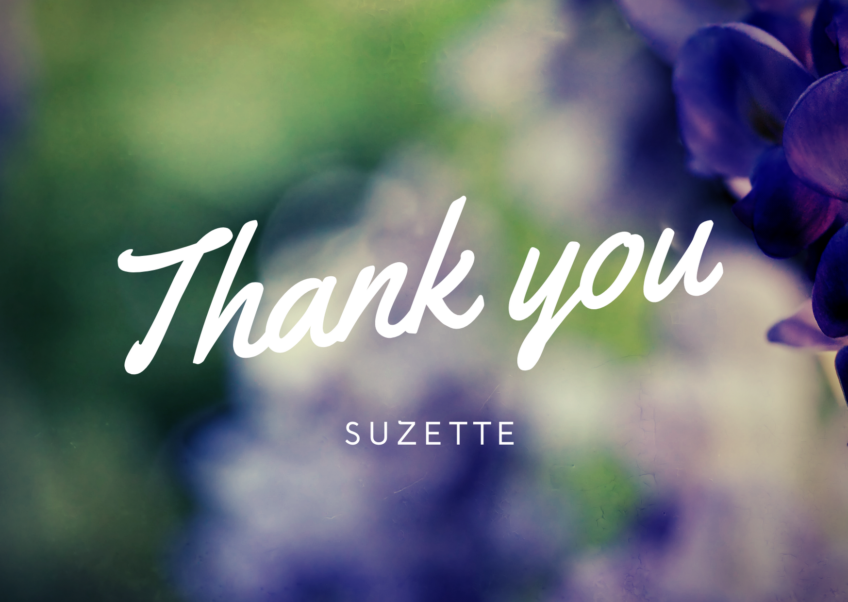 Thank You Suzette